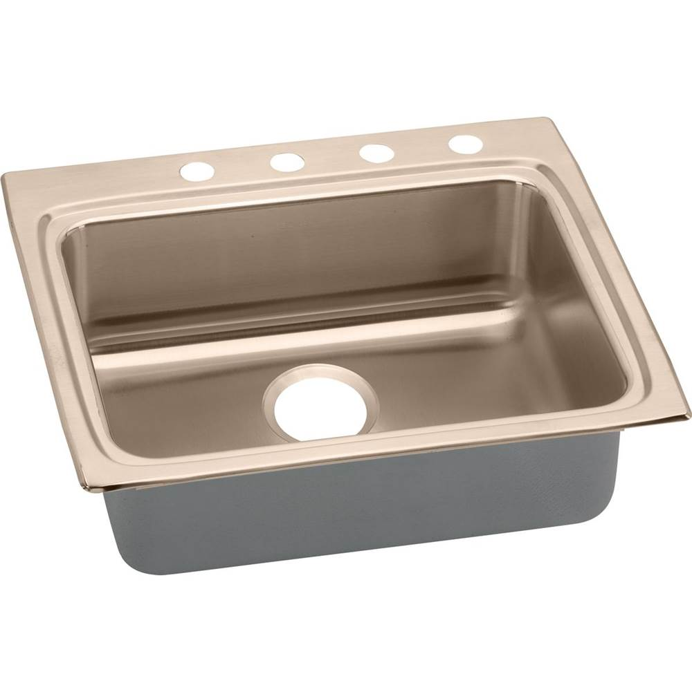 Elkay Drop In Kitchen Sinks item LRAD2522654-CU